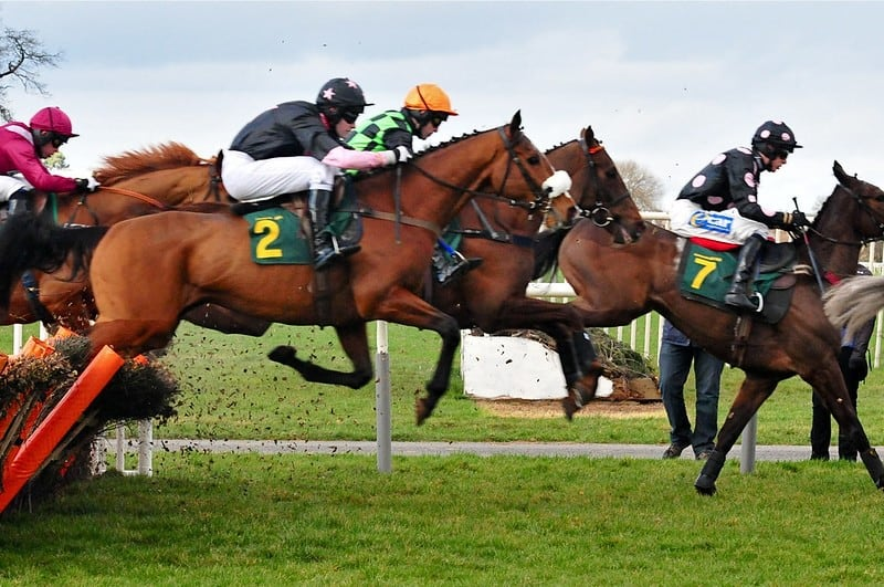 Horses in turf - betting syndicates
