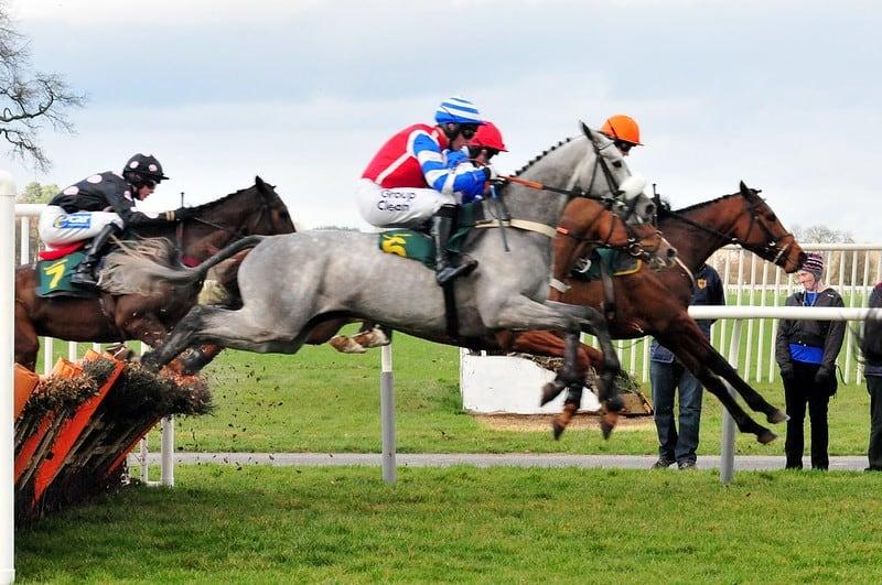 Horses jump hurdles - betting syndicates
