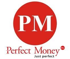 perfect money logo - Best payment methods Nigeria